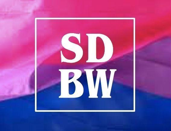 San diego california gay bisexual club #11