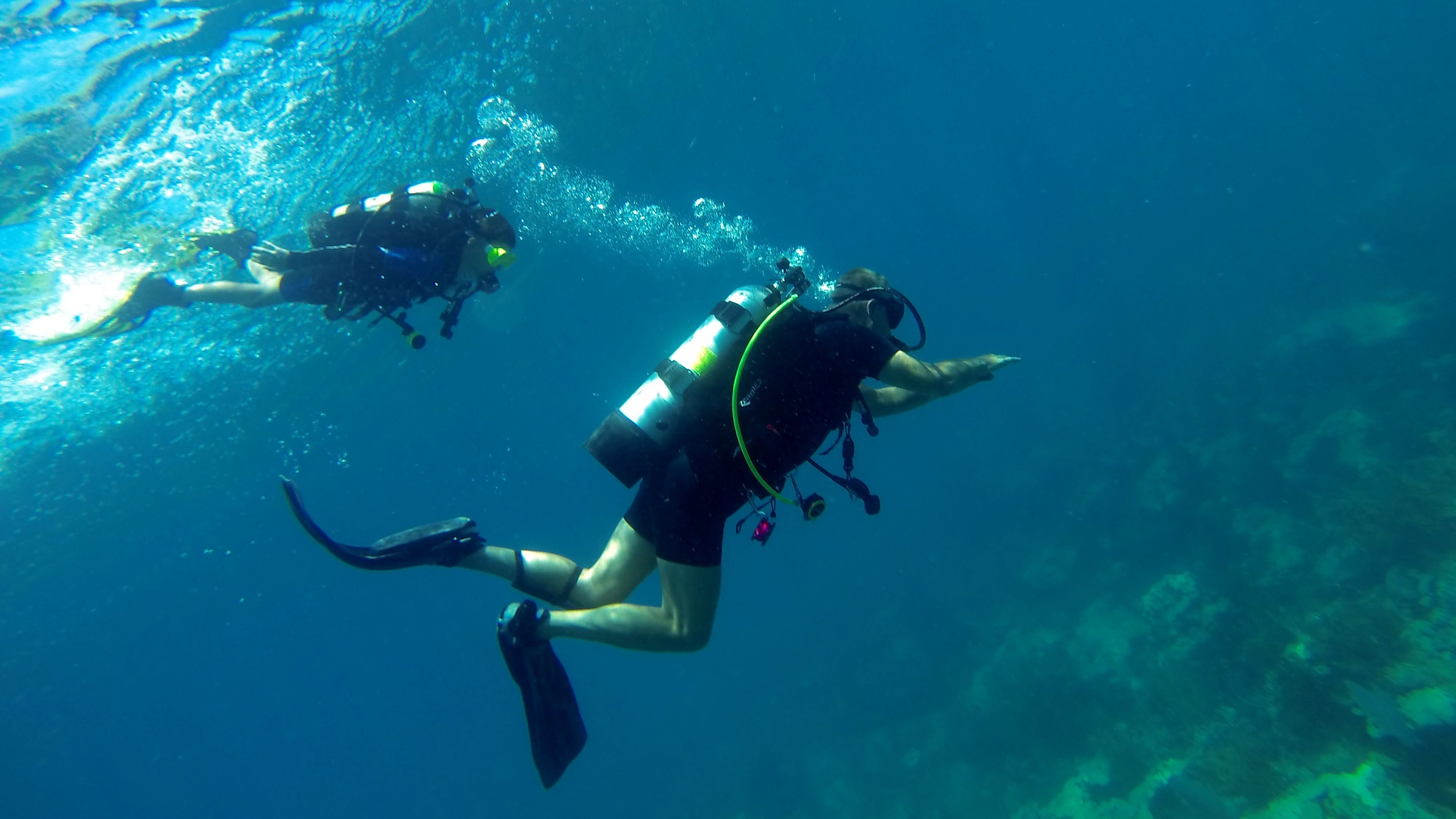 South Florida Beach Divers