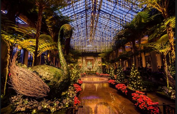 Longwood gardens a photo rich site for all seasons - Places to eat near longwood gardens ...