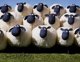 Sheepish (Shy Friends in Surrey and Hampshire)