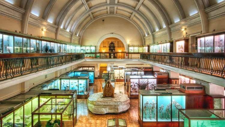 London Museums A-Z: for 30s & 40s (LoMAZ)