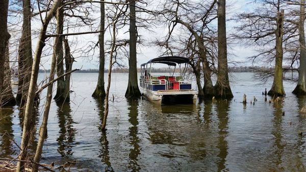 Reelfoot Lake State Park - Archaeology tour by pontoon boat + hike