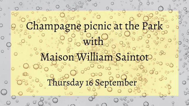 Champagne Picnic at the Park