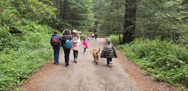 Diablo Valley Homeschool Group (Concord, CA)