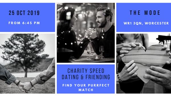 Gennemsnitlige dating site indtægter