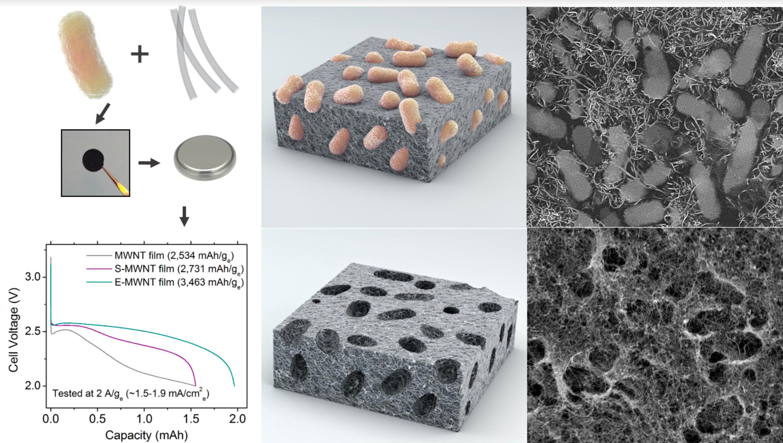 SF Bay Area Nanotechnology Council