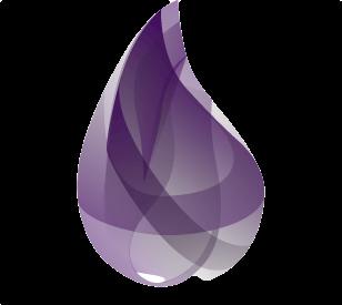 Toronto Elixir