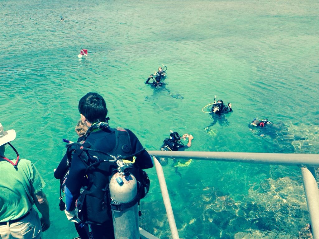 Kohala Coast Dive Club