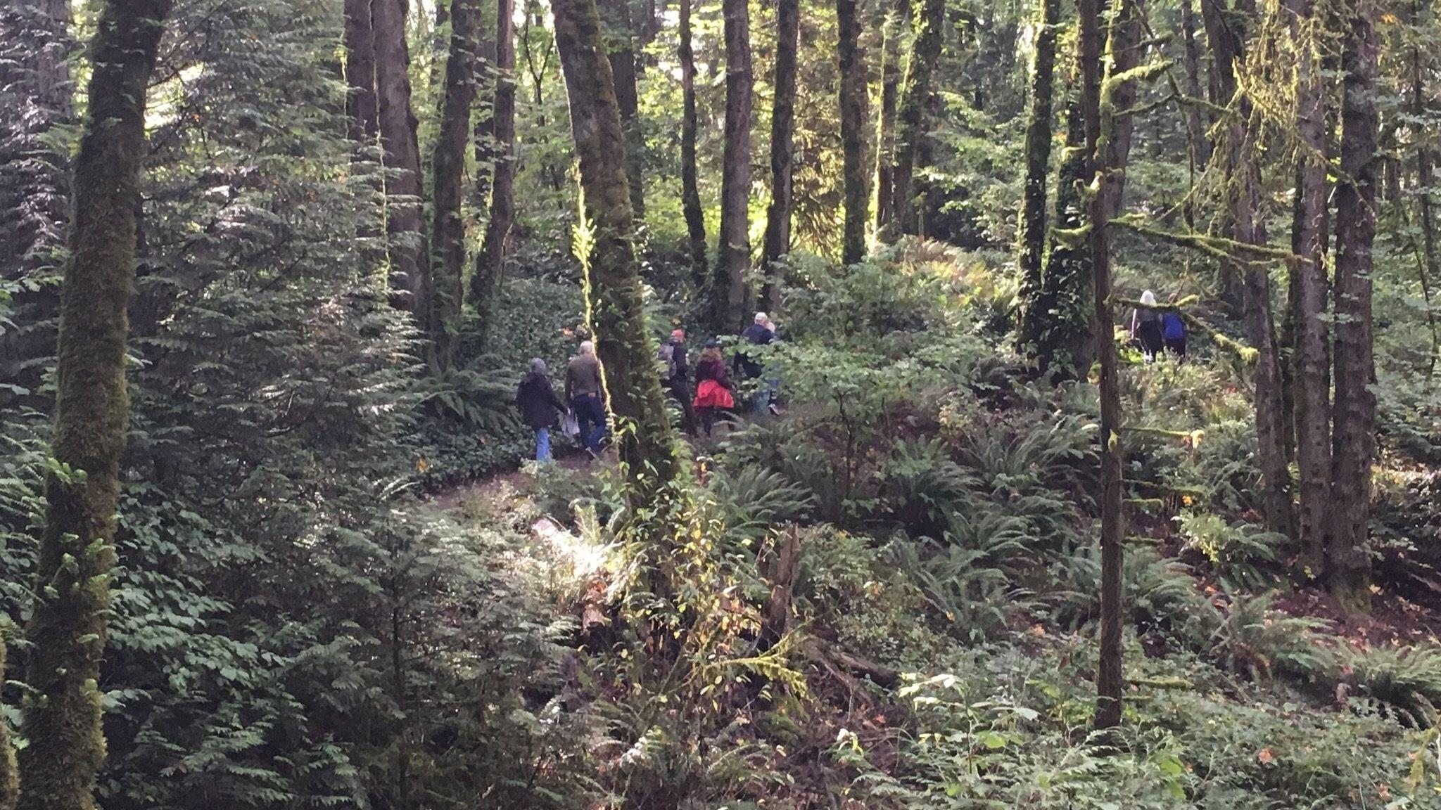 Beaverton 60+ Years - Walking, Hiking and Outdoor Adventures