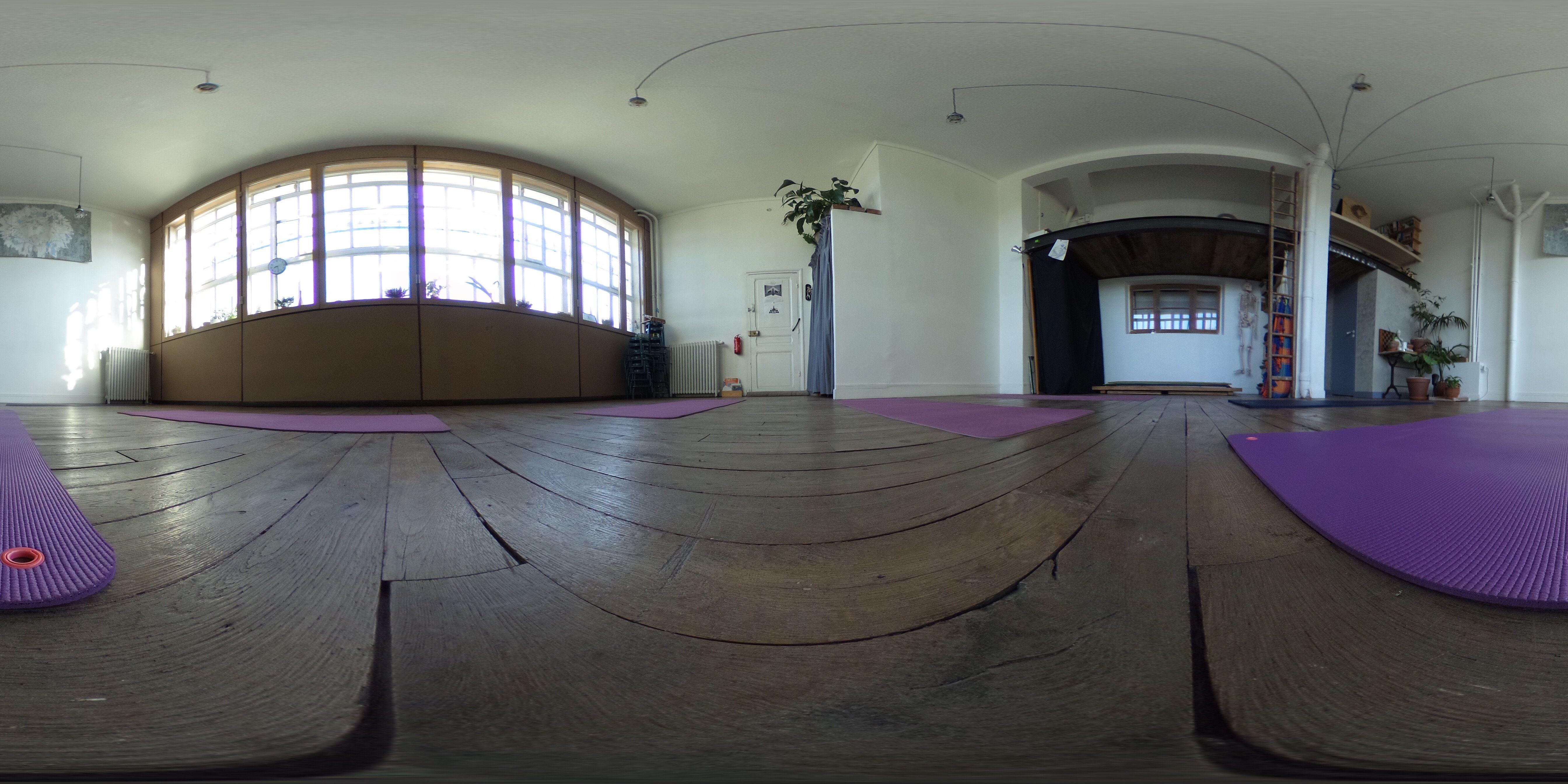 ATELIER VIE Hatha Yoga