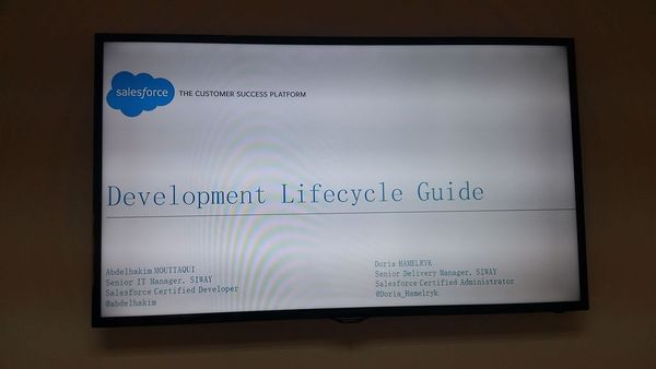 2016.04.02 - Development Lifecycle Guide