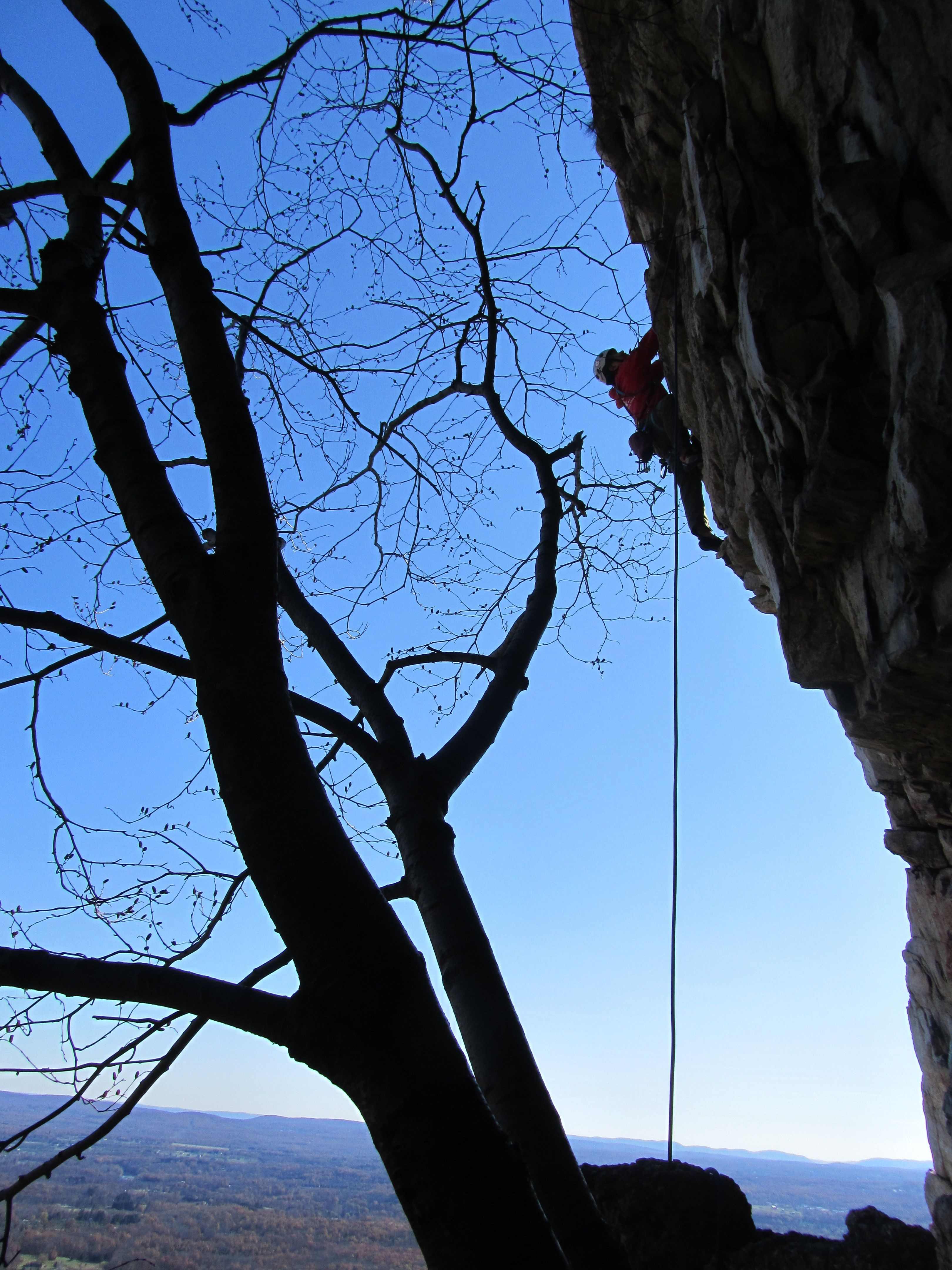 NYC I Wanna Learn Rock Climbing But Not Alone!