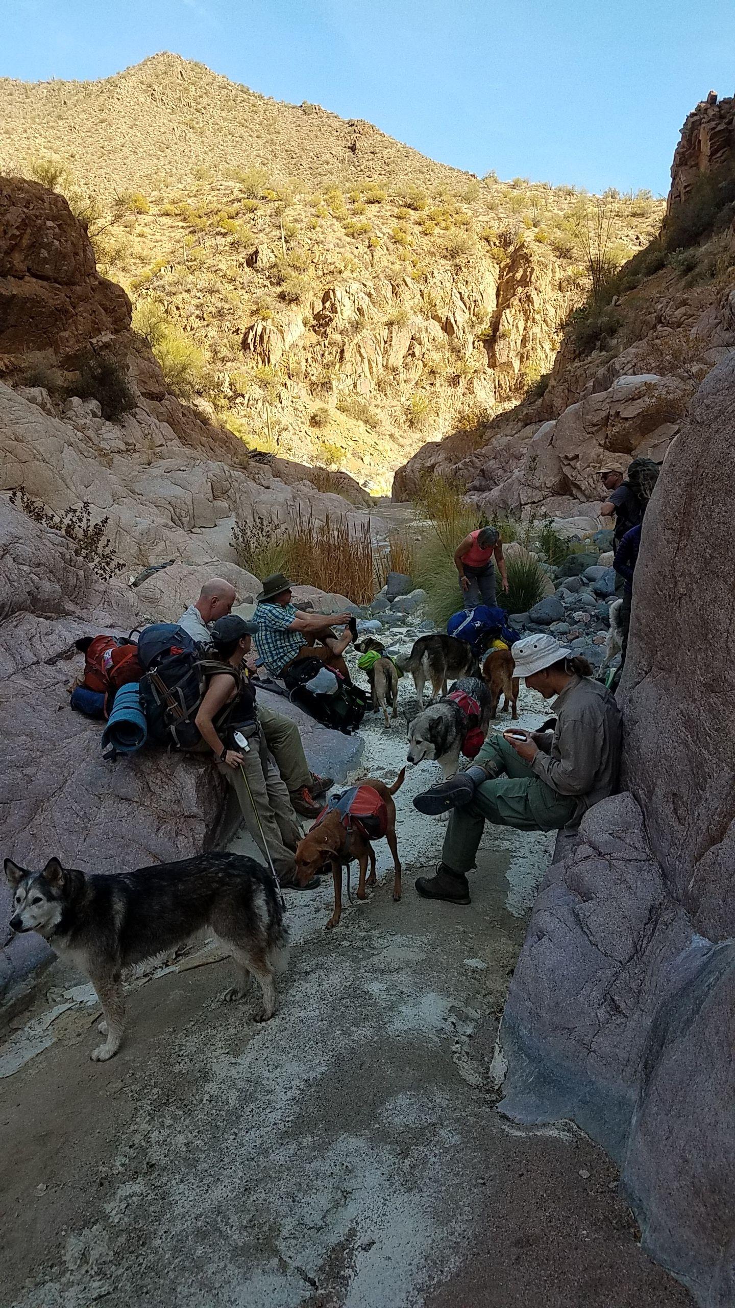 Photos arizona backpacking club phoenix az meetup for Mt lemmon cabin rentals pet friendly