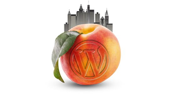Marietta (Metro Atlanta) WordPress Meetup