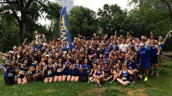 Dashing Whippets Running Team - Westchester