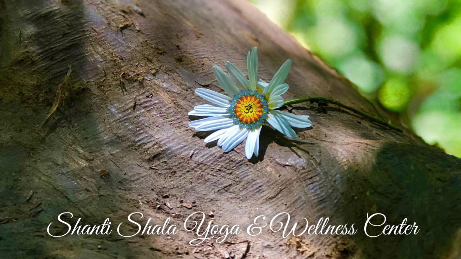 Shanti Shala Yoga & Wellness Center