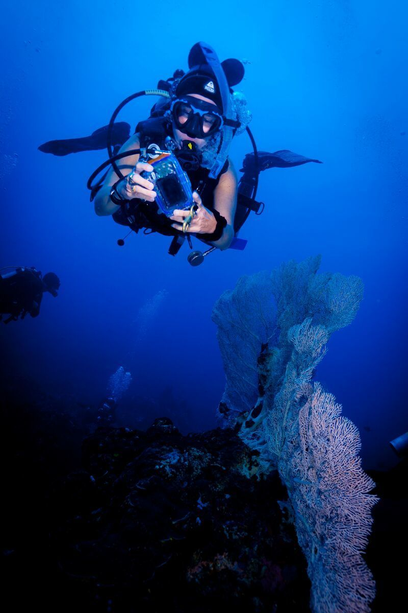 Thanksgiving Scuba Diving in the Philippines