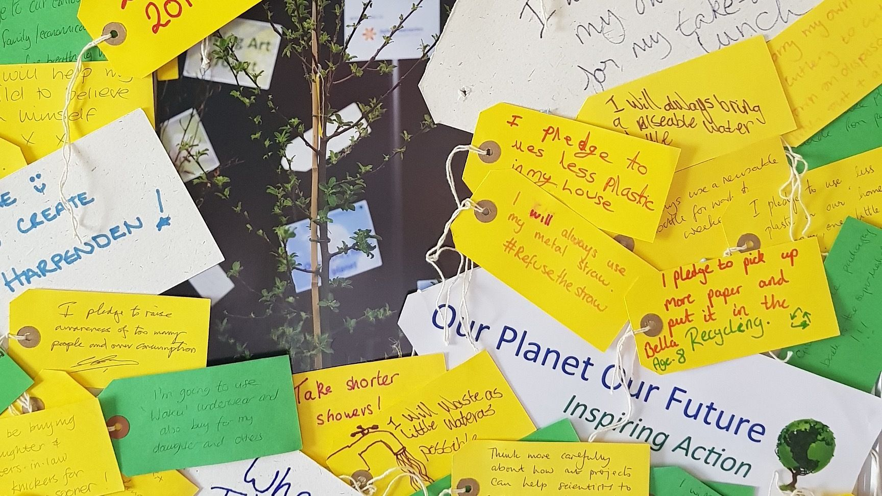 Our Planet Our Future continues ..