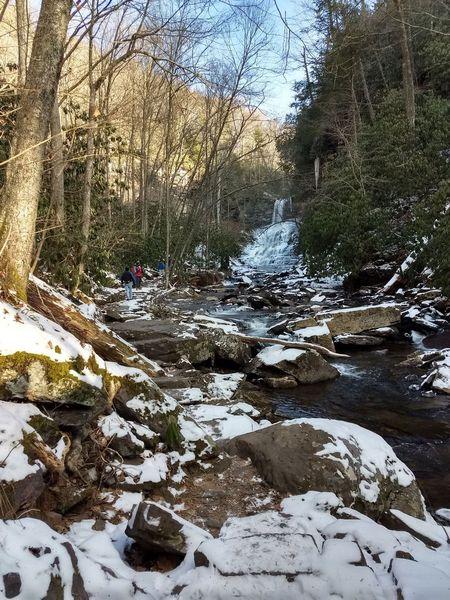 New River Valley Hiking And Wildlife (Radford, VA)