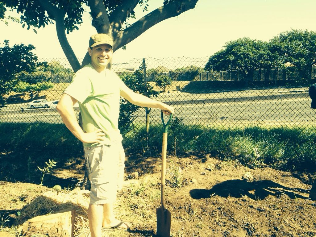 Guerilla Gardening - Caring for neglected spaces