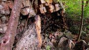 Photo for Laurel Run - Stack Rock - Hidden Waterfall (Rating: A) April 27 2019