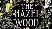 Photo for The Hazel Wood by Melissa Albert Meetup and Discussion  June 27 2019