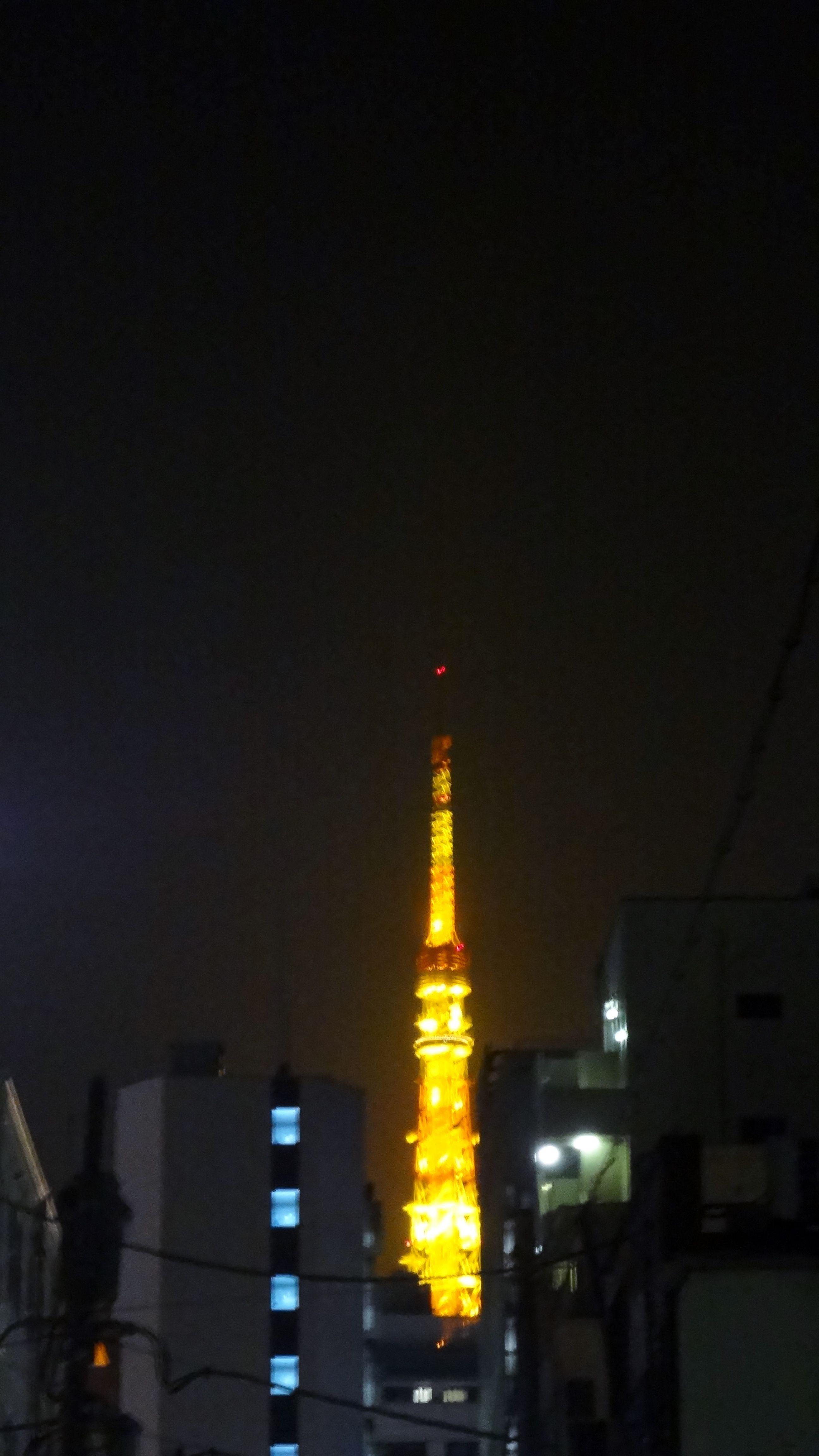 Meetup de l'AFJ et Amis Francophones à Tokyo