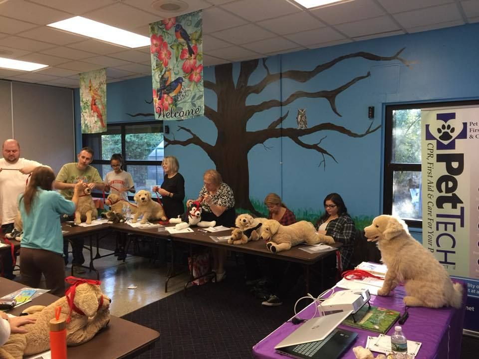 NY Pet CPR, First Aid & Care