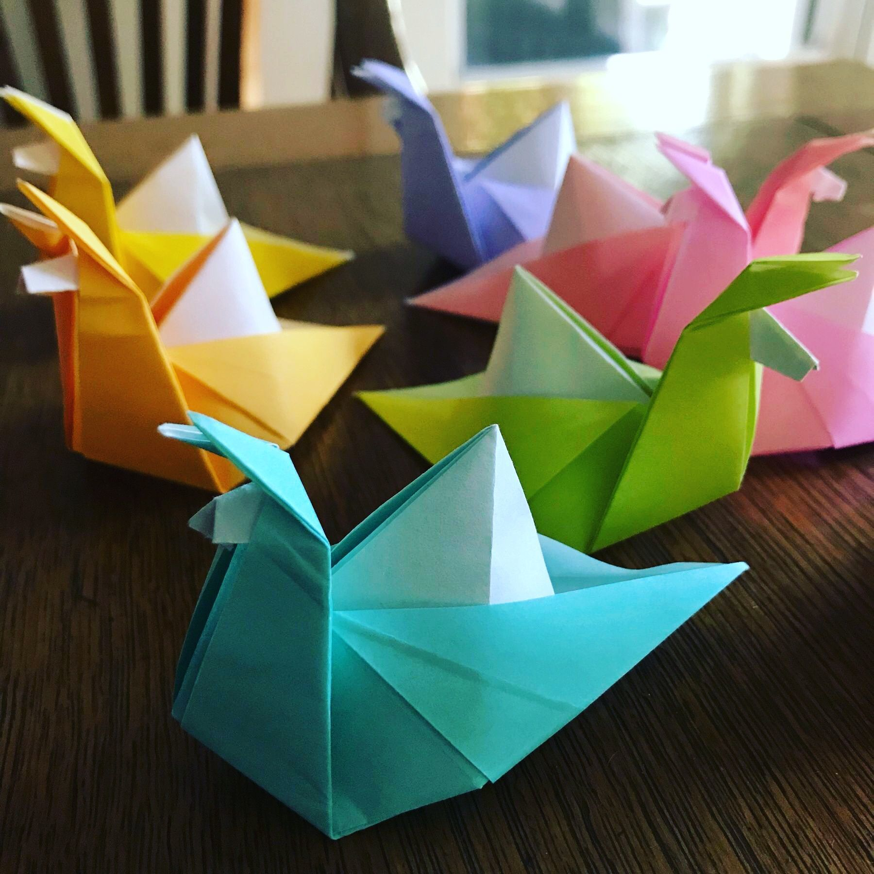 Tampa Bay Origami Group