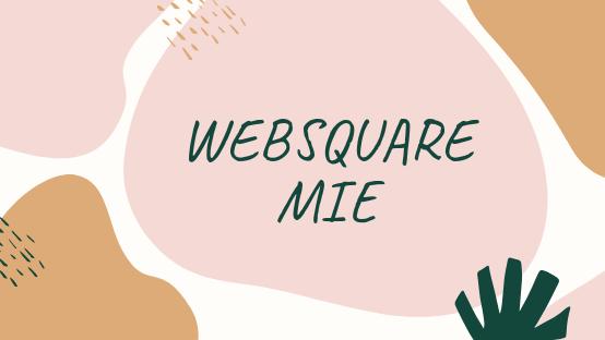 WEB SQUARE MIE