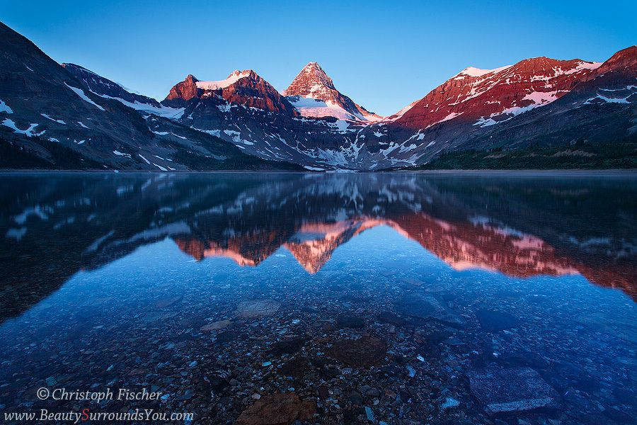 Phoenix Nature Photo Workshops