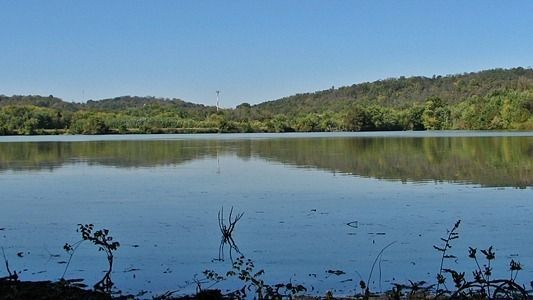 Science On Tap - The Oxbow, a Special Wetland