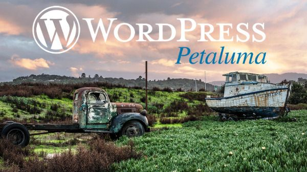 WordPress Petaluma