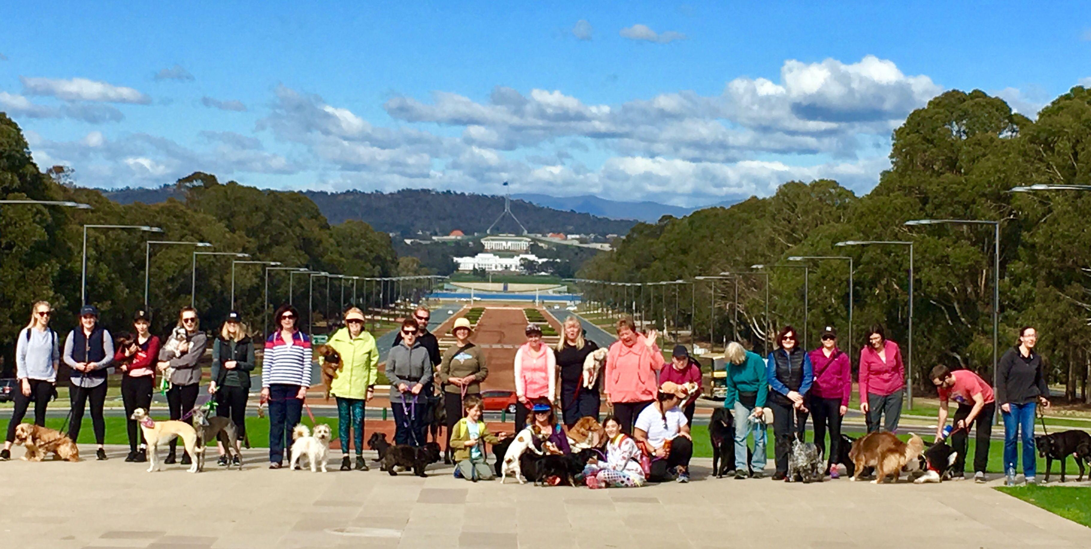 Canberra Dog Walks
