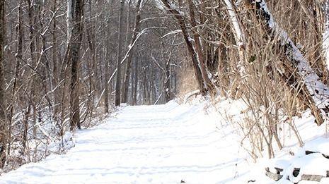 Heathens in Nature: W. M. Johnson Hills Park
