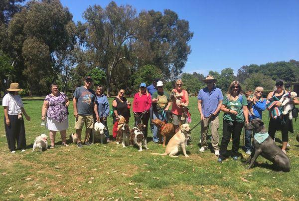 Mighty Mutts of O C  (Huntington Beach, CA) | Meetup