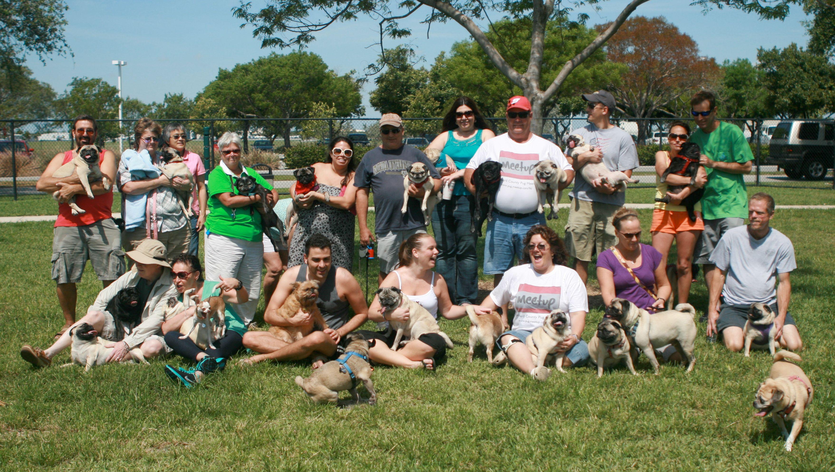 The Broward County Pug Meetup Group