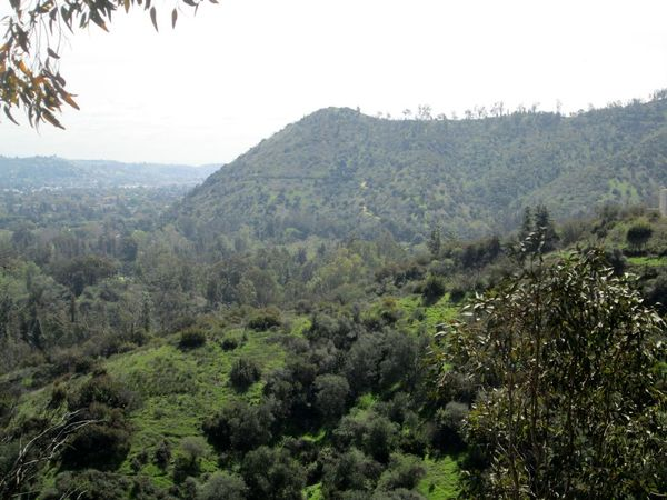Image Result For Armin Garden Griffith Park