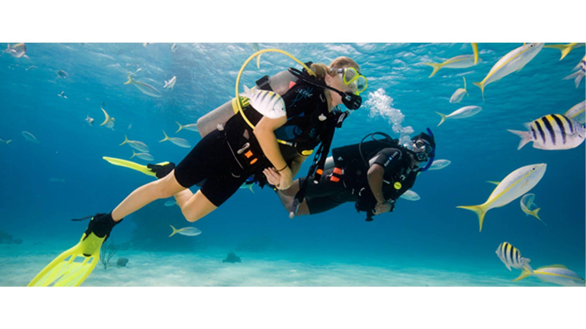 Adventure Plus Scuba Diving