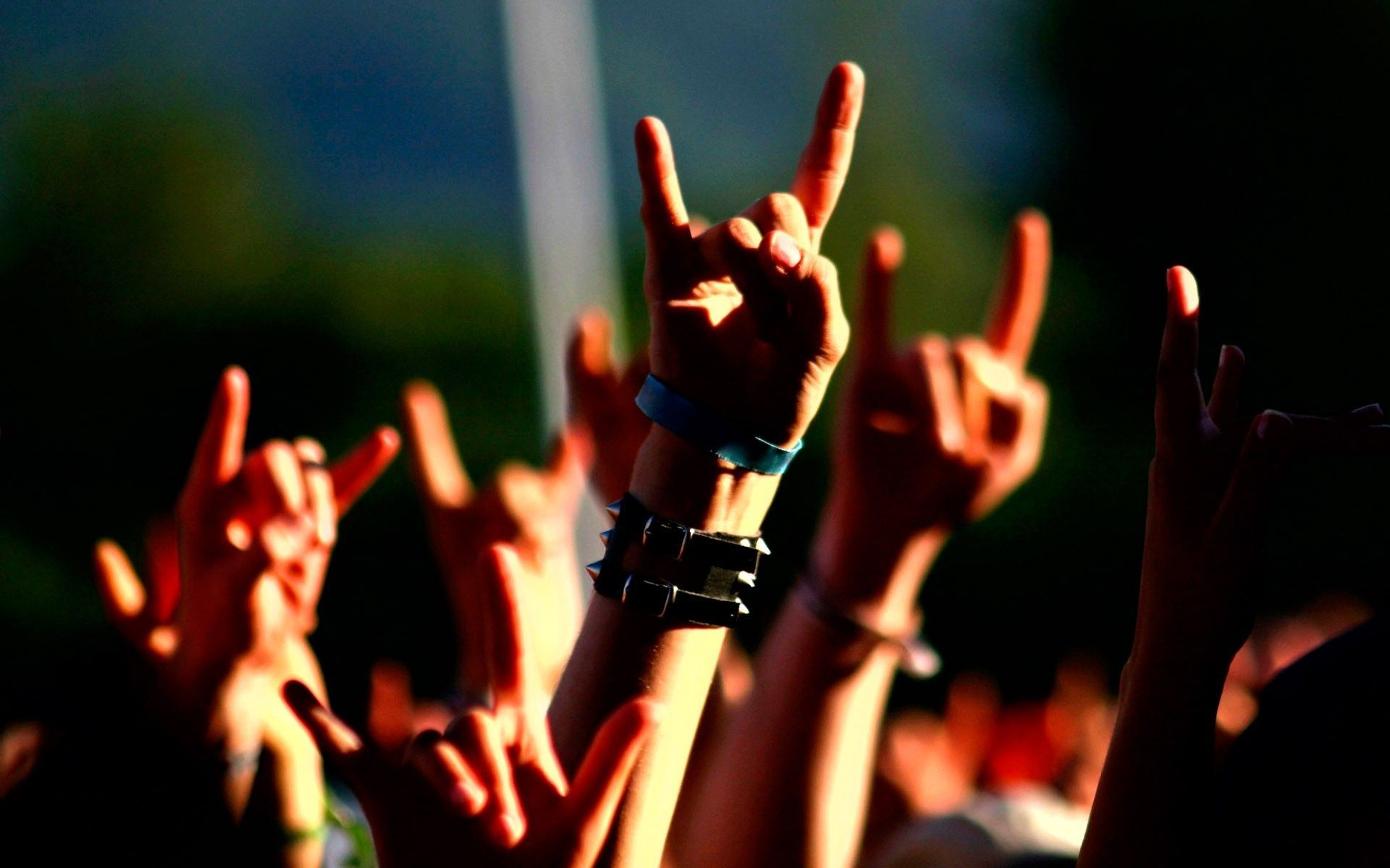 Rock and Metal fans - gigs and nights out