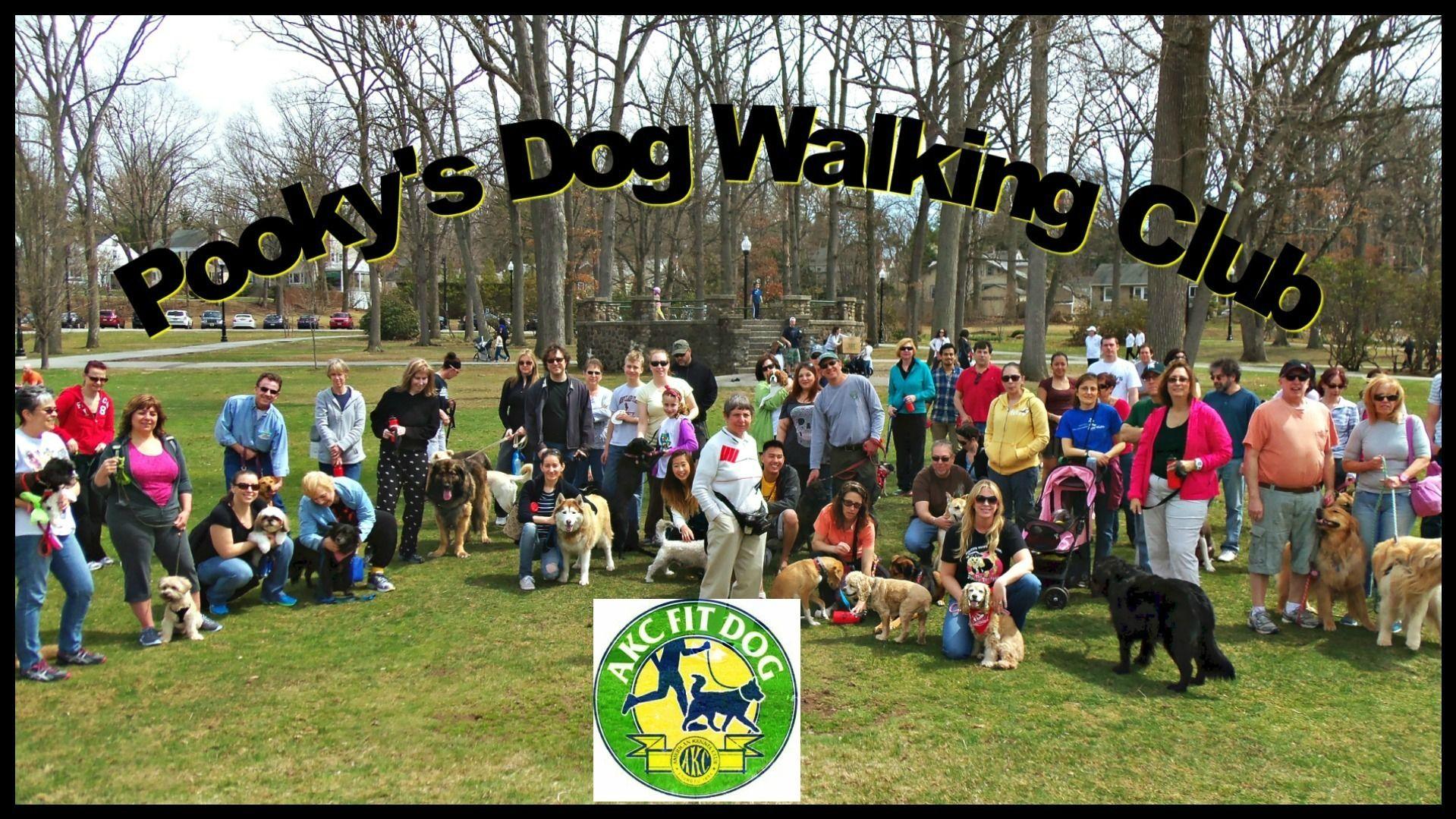Pooky's Dog Walking Club