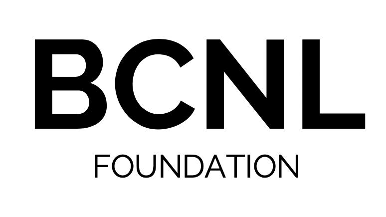 Blockchain Netherlands (BCNL Foundation)