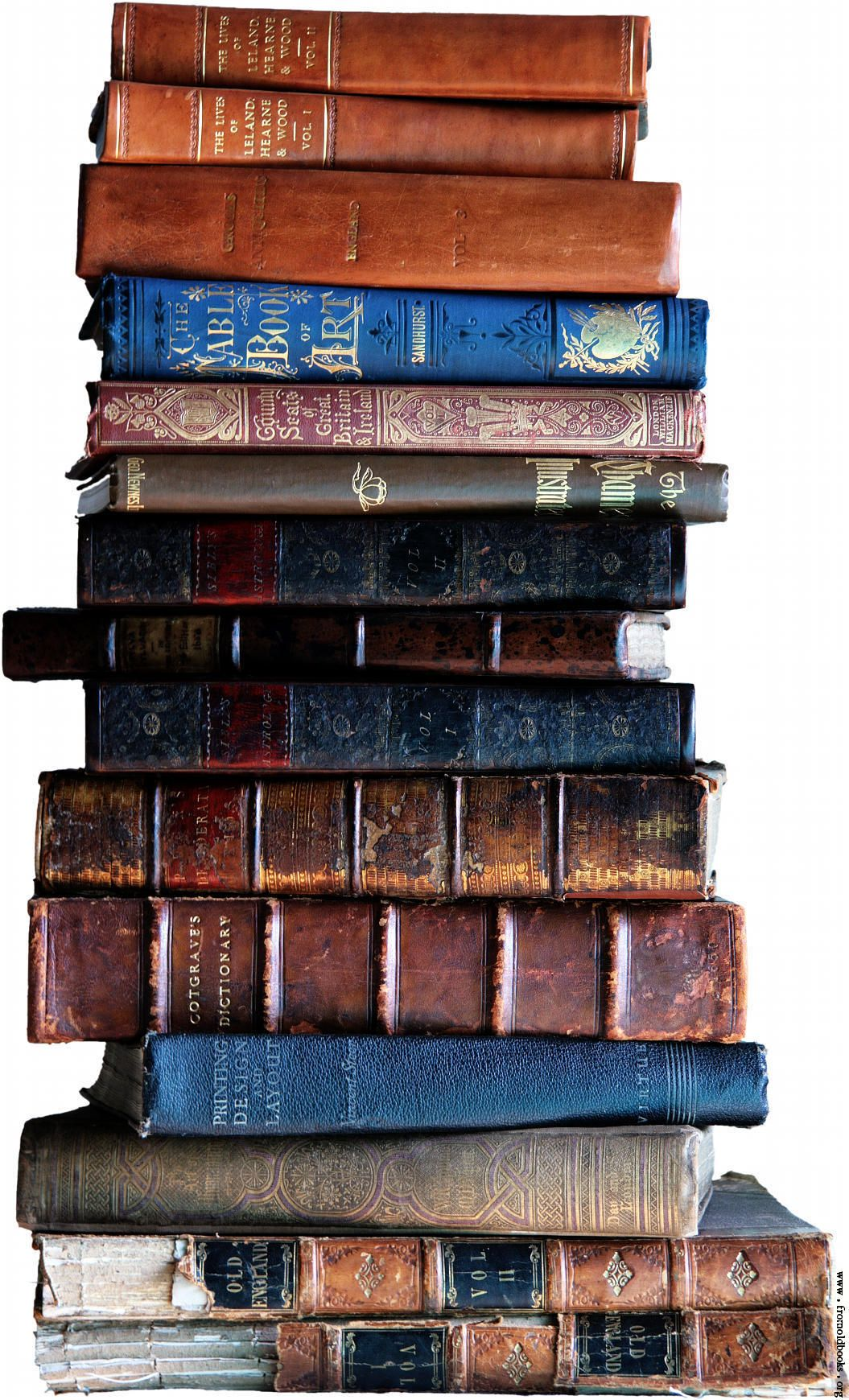 Explorers of Cincinnati's Bookshelves