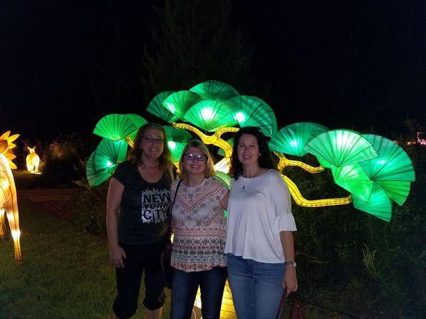 Daniel Stowe Botanical Garden Chinese Lantern Festival Meetup