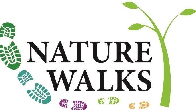 Nature Walks - Mornington Peninsula and Surrounds