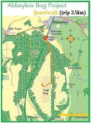 Outdoors: Abbeyleix Bog