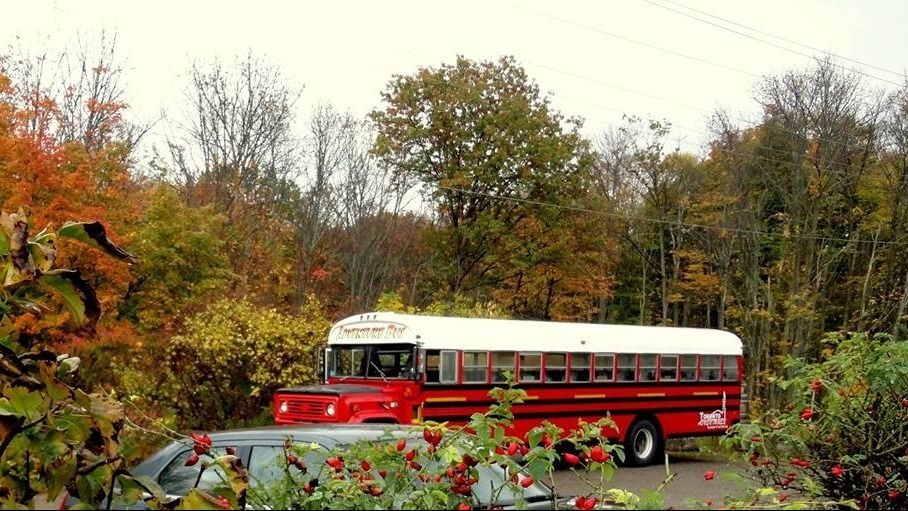 TheAdventureBusCompany.com   - Affordable Tours from Toronto