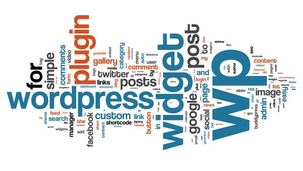 how to search engine optimize a wordpress blog to