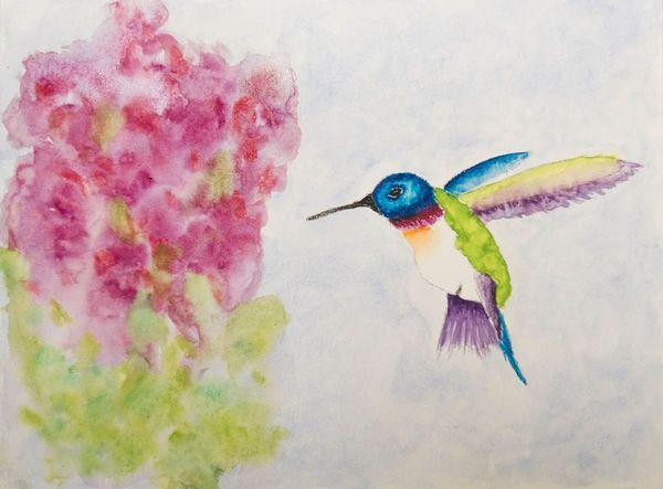 Simple Hummingbird Painting | www.imgkid.com - The Image ...