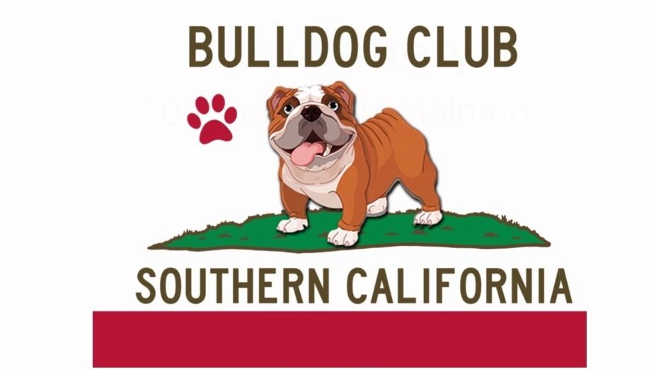 Bulldog Club of Southern California